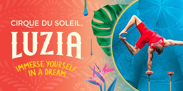 Picture of LUZIA acrobat and discount tickets from FirstClass Group Tickets
